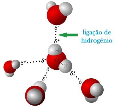 Resultado de imagem para ligação química pontes de hidrogênio
